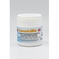 Bio Faktor Amoxicillin 10% 100 tablets