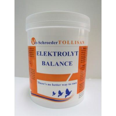 Tollisan Elektrolyt Balance 500g